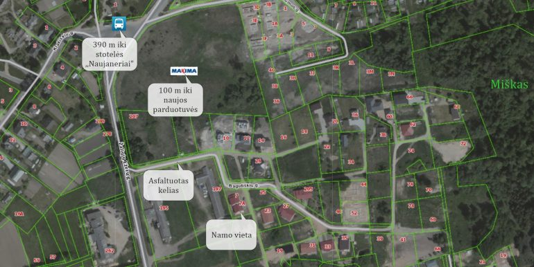 Map MANO namas